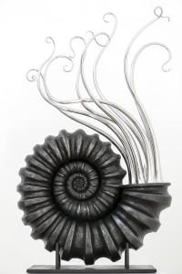 Ammonidea